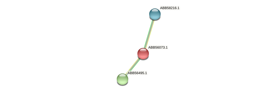 ABB56073.1 protein (Synechococcus elongatus PCC7942) - STRING interaction network
