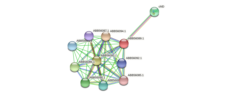 ABB56089.1 protein (Synechococcus elongatus PCC7942) - STRING interaction network