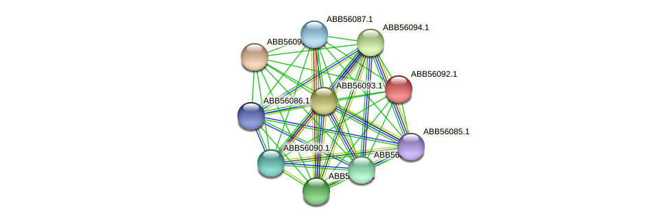 ABB56092.1 protein (Synechococcus elongatus PCC7942) - STRING interaction network