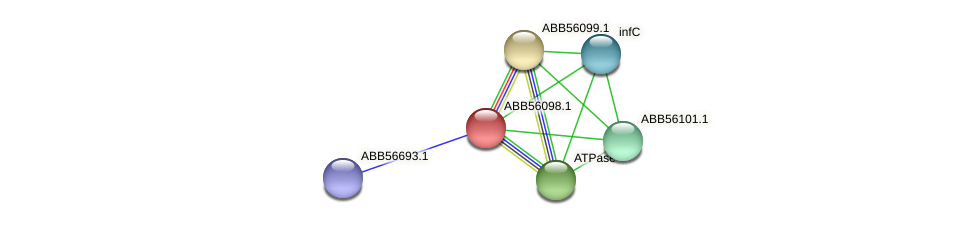 ABB56098.1 protein (Synechococcus elongatus PCC7942) - STRING interaction network