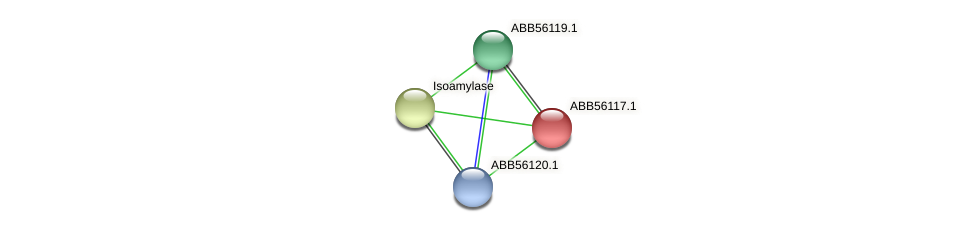 ABB56117.1 protein (Synechococcus elongatus PCC7942) - STRING interaction network
