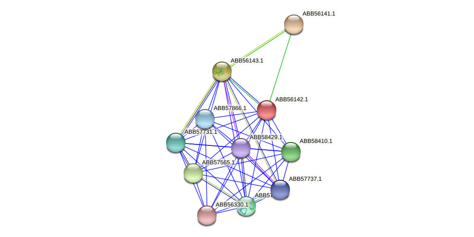 ABB56142.1 protein (Synechococcus elongatus PCC7942) - STRING interaction network