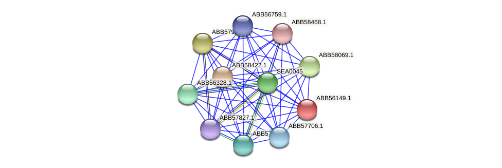 ABB56149.1 protein (Synechococcus elongatus PCC7942) - STRING interaction network