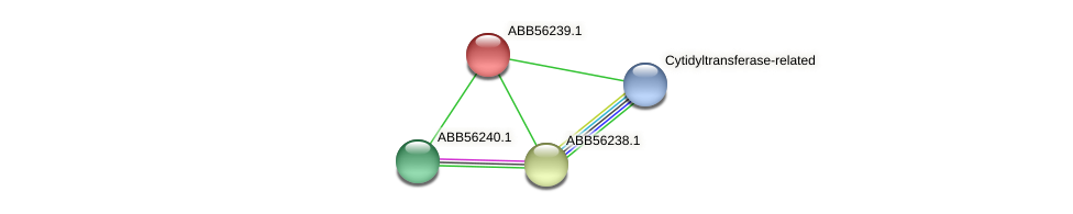 ABB56239.1 protein (Synechococcus elongatus PCC7942) - STRING interaction network
