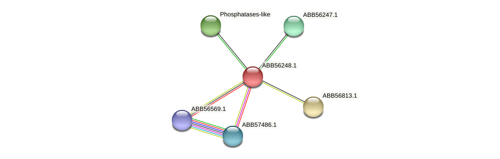 ABB56248.1 protein (Synechococcus elongatus PCC7942) - STRING interaction network