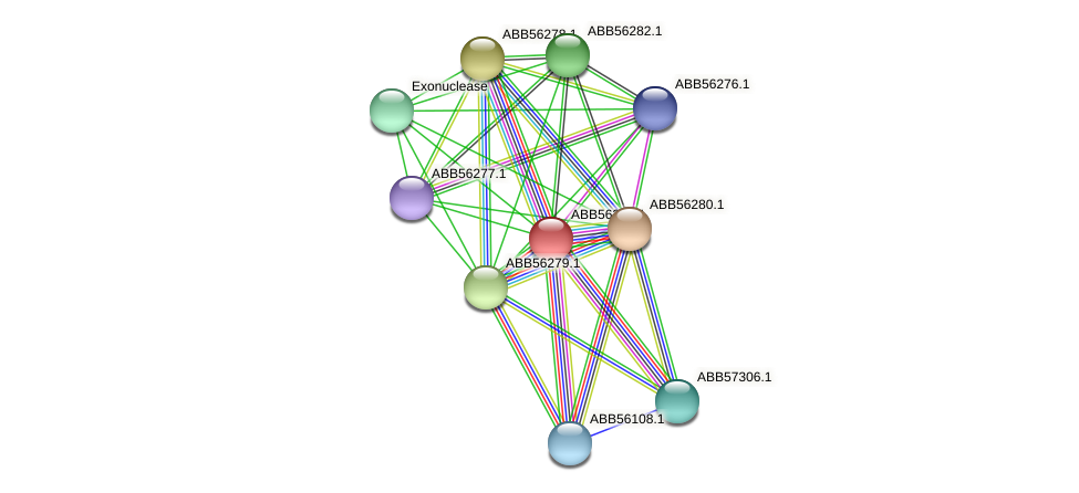 ABB56281.1 protein (Synechococcus elongatus PCC7942) - STRING interaction network