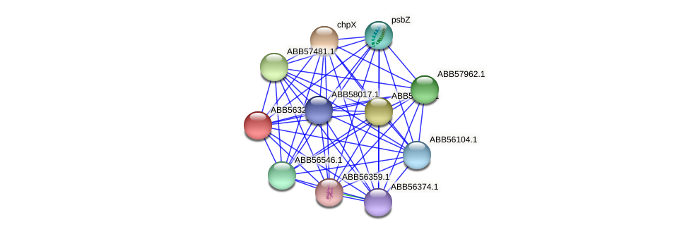 ABB56325.1 protein (Synechococcus elongatus PCC7942) - STRING interaction network