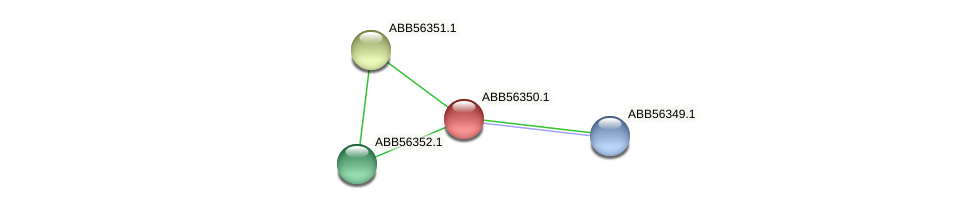 ABB56350.1 protein (Synechococcus elongatus PCC7942) - STRING interaction network