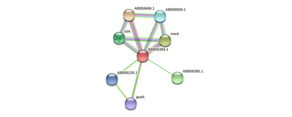 ABB56384.1 protein (Synechococcus elongatus PCC7942) - STRING interaction network