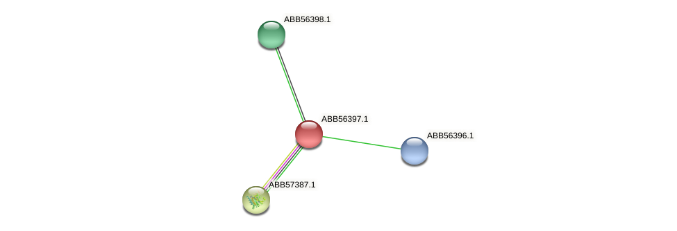 ABB56397.1 protein (Synechococcus elongatus PCC7942) - STRING interaction network