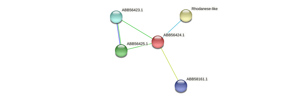 ABB56424.1 protein (Synechococcus elongatus PCC7942) - STRING interaction network