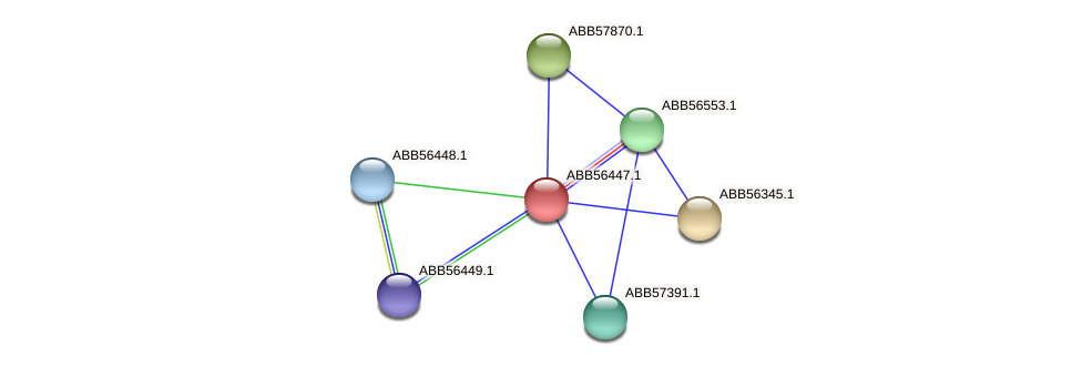 ABB56447.1 protein (Synechococcus elongatus PCC7942) - STRING interaction network