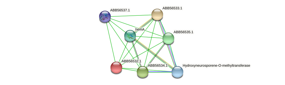 ABB56532.1 protein (Synechococcus elongatus PCC7942) - STRING interaction network