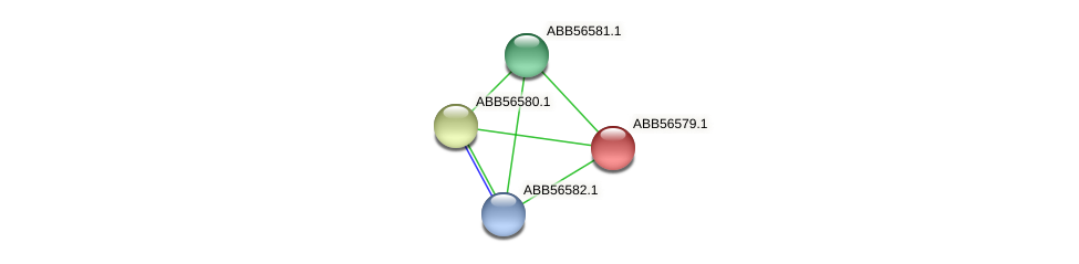 ABB56579.1 protein (Synechococcus elongatus PCC7942) - STRING interaction network