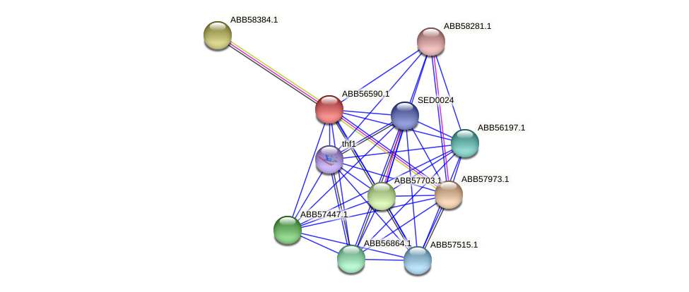 ABB56590.1 protein (Synechococcus elongatus PCC7942) - STRING interaction network