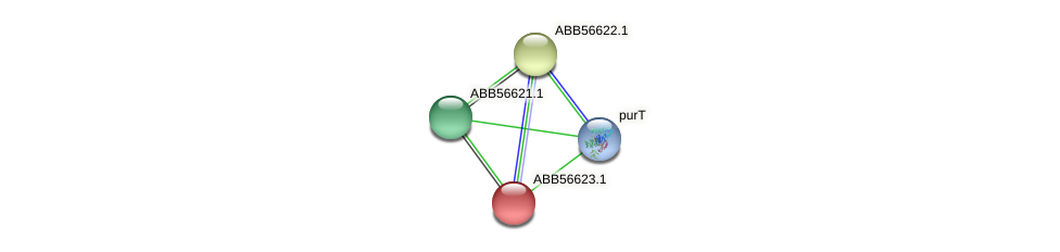 ABB56623.1 protein (Synechococcus elongatus PCC7942) - STRING interaction network
