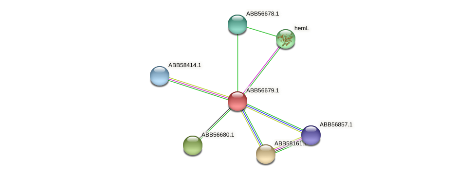 ABB56679.1 protein (Synechococcus elongatus PCC7942) - STRING interaction network