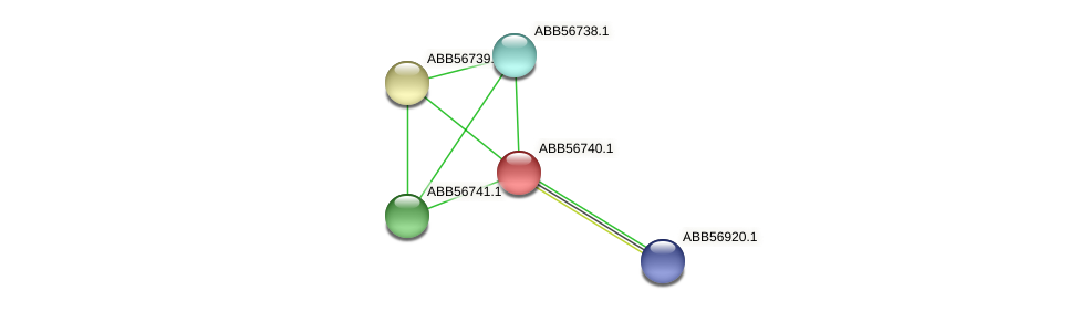ABB56740.1 protein (Synechococcus elongatus PCC7942) - STRING interaction network