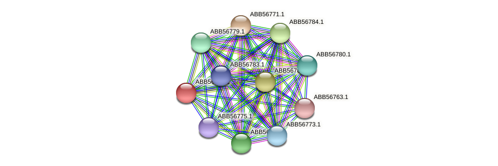 ABB56770.1 protein (Synechococcus elongatus PCC7942) - STRING interaction network