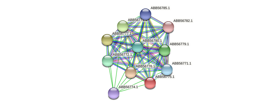 ABB56775.1 protein (Synechococcus elongatus PCC7942) - STRING interaction network