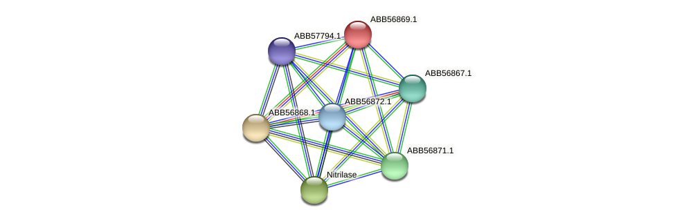 ABB56869.1 protein (Synechococcus elongatus PCC7942) - STRING interaction network