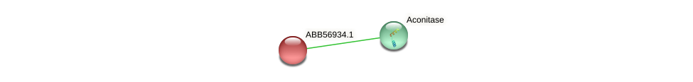 ABB56934.1 protein (Synechococcus elongatus PCC7942) - STRING interaction network