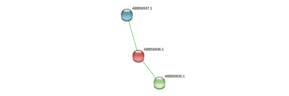 ABB56936.1 protein (Synechococcus elongatus PCC7942) - STRING interaction network
