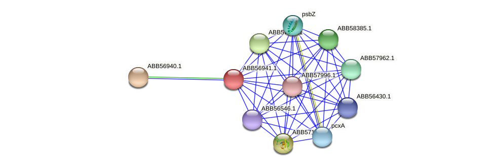 ABB56941.1 protein (Synechococcus elongatus PCC7942) - STRING interaction network