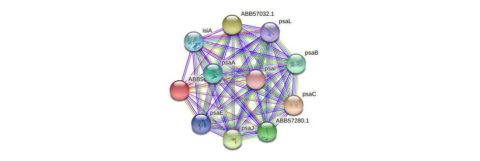 ABB56950.1 protein (Synechococcus elongatus PCC7942) - STRING interaction network
