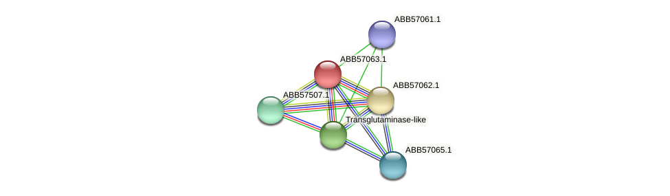 ABB57063.1 protein (Synechococcus elongatus PCC7942) - STRING interaction network