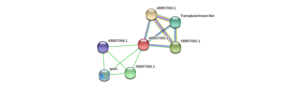 ABB57065.1 protein (Synechococcus elongatus PCC7942) - STRING interaction network