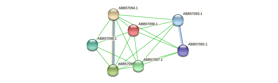 ABB57096.1 protein (Synechococcus elongatus PCC7942) - STRING interaction network