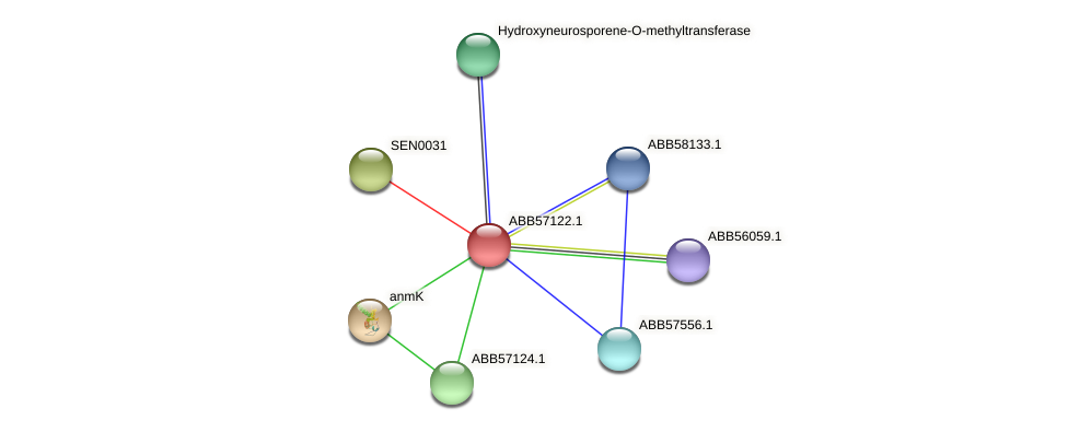 ABB57122.1 protein (Synechococcus elongatus PCC7942) - STRING interaction network