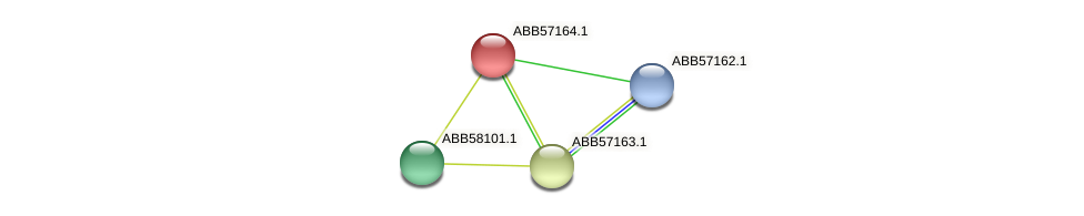 ABB57164.1 protein (Synechococcus elongatus PCC7942) - STRING interaction network