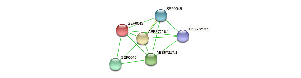 SEF0043 protein (Synechococcus elongatus PCC7942) - STRING interaction network