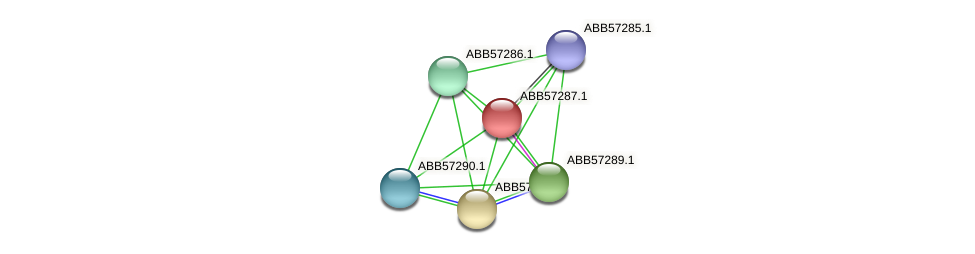 ABB57287.1 protein (Synechococcus elongatus PCC7942) - STRING interaction network