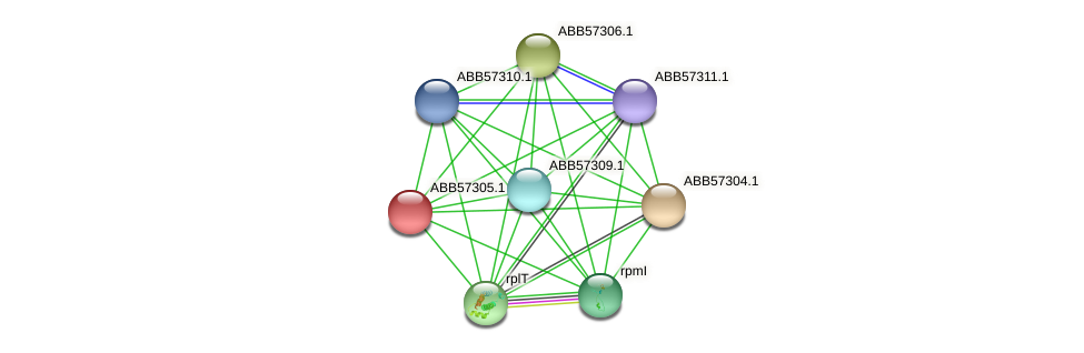 ABB57305.1 protein (Synechococcus elongatus PCC7942) - STRING interaction network