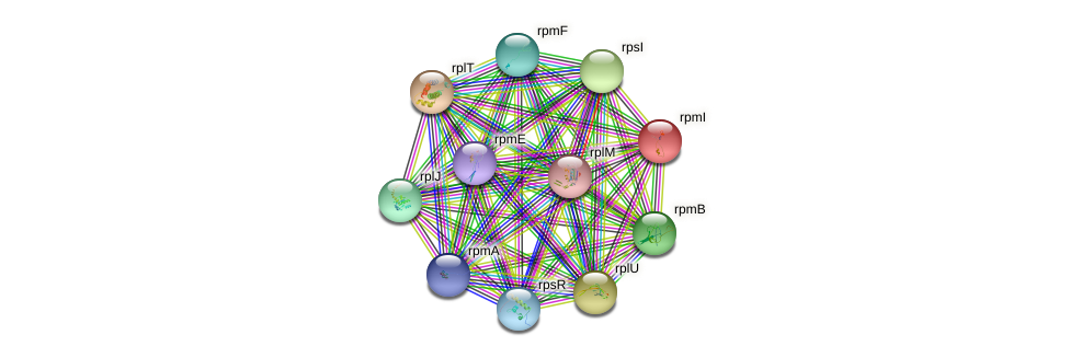 rpmI protein (Synechococcus elongatus PCC7942) - STRING interaction network