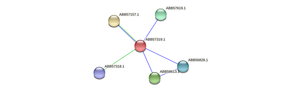ABB57319.1 protein (Synechococcus elongatus PCC7942) - STRING interaction network