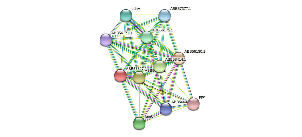 ABB57327.1 protein (Synechococcus elongatus PCC7942) - STRING interaction network