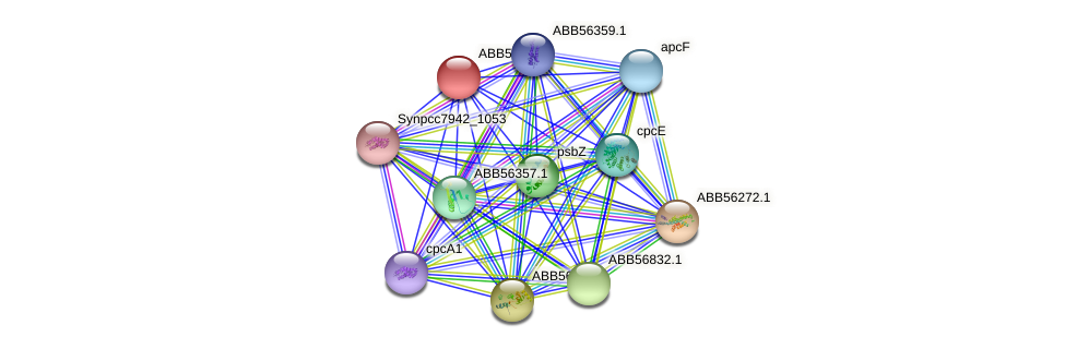 ABB57369.1 protein (Synechococcus elongatus PCC7942) - STRING interaction network