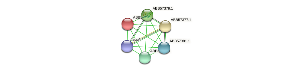 ABB57378.1 protein (Synechococcus elongatus PCC7942) - STRING interaction network