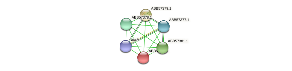 ABB57380.1 protein (Synechococcus elongatus PCC7942) - STRING interaction network
