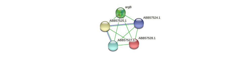 ABB57528.1 protein (Synechococcus elongatus PCC7942) - STRING interaction network