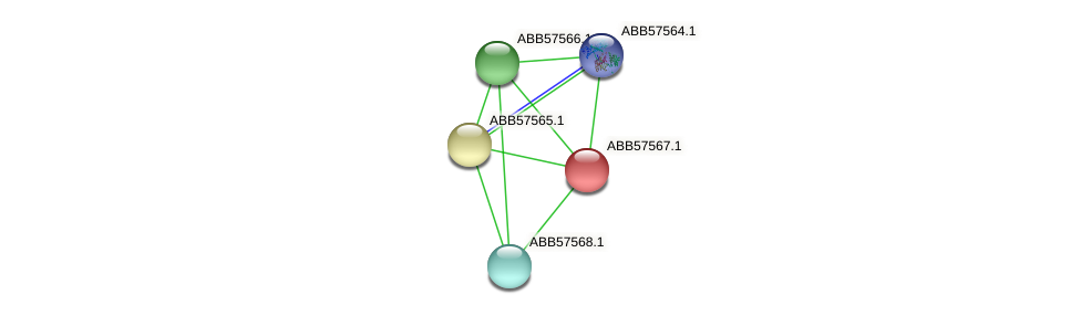 ABB57567.1 protein (Synechococcus elongatus PCC7942) - STRING interaction network