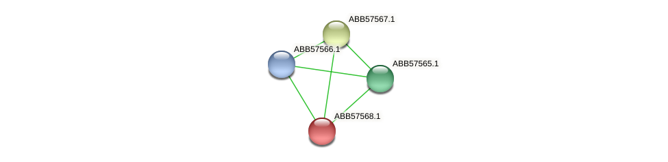 ABB57568.1 protein (Synechococcus elongatus PCC7942) - STRING interaction network