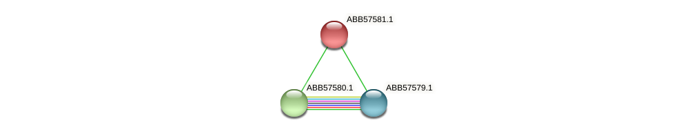 ABB57581.1 protein (Synechococcus elongatus PCC7942) - STRING interaction network