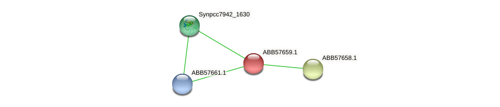 ABB57659.1 protein (Synechococcus elongatus PCC7942) - STRING interaction network