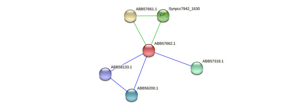 ABB57662.1 protein (Synechococcus elongatus PCC7942) - STRING interaction network