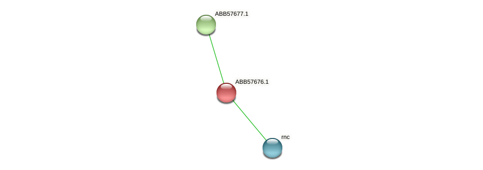ABB57676.1 protein (Synechococcus elongatus PCC7942) - STRING interaction network